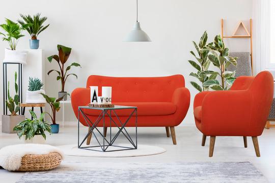 Популярные мифы о диванах